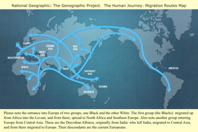 Map_migration_routes (1)